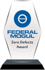 FederalMogul-Defects